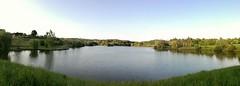 Lac su Crècq (Orthez)