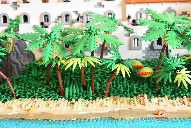 2.Jungle