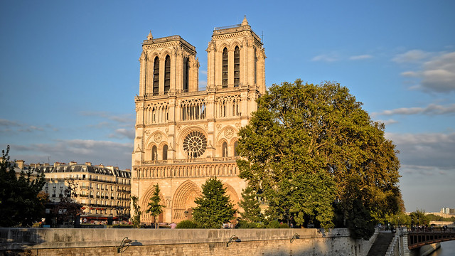 View of Notre Dame de Paris at sunset