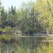 pond at PNE sanctuary by annapolis_rose