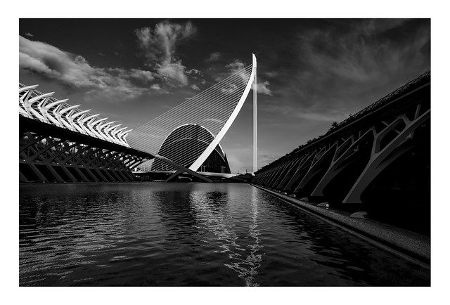 Tooth and Harp Reflections | City of Arts & Sciences