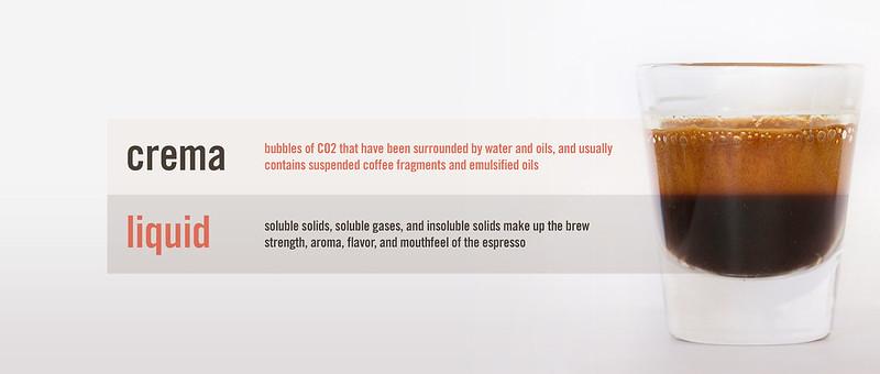 Hai phần chính của một cốc Espresso hoàn chỉnh