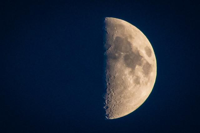 A Perfect Half Moon