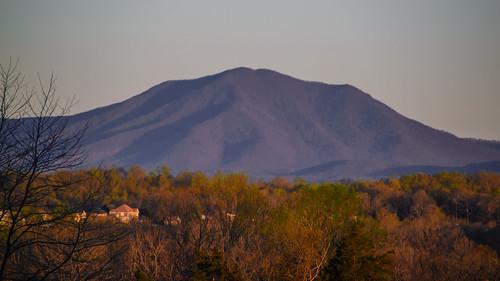 smack53 virginia forest springtime spring mountains nikon d3100 nikond3100 scenic scenery