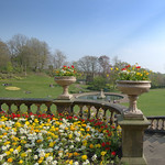 Spring colour at Miller Park, Preston