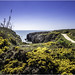 Landscape near Cabo Carvoeiro