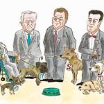 Las (hambrientas) mascotas del poder