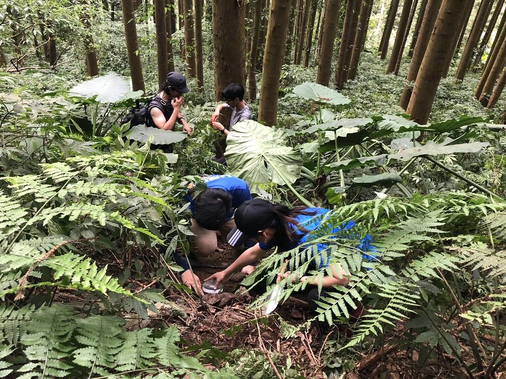 嘉義縣市從沿海濕地到台灣最高峰高山森林生態,在嘉義大學師生支持下,成為第一個展示台灣自然生態軟實力的城市。圖片來源:嘉義大學