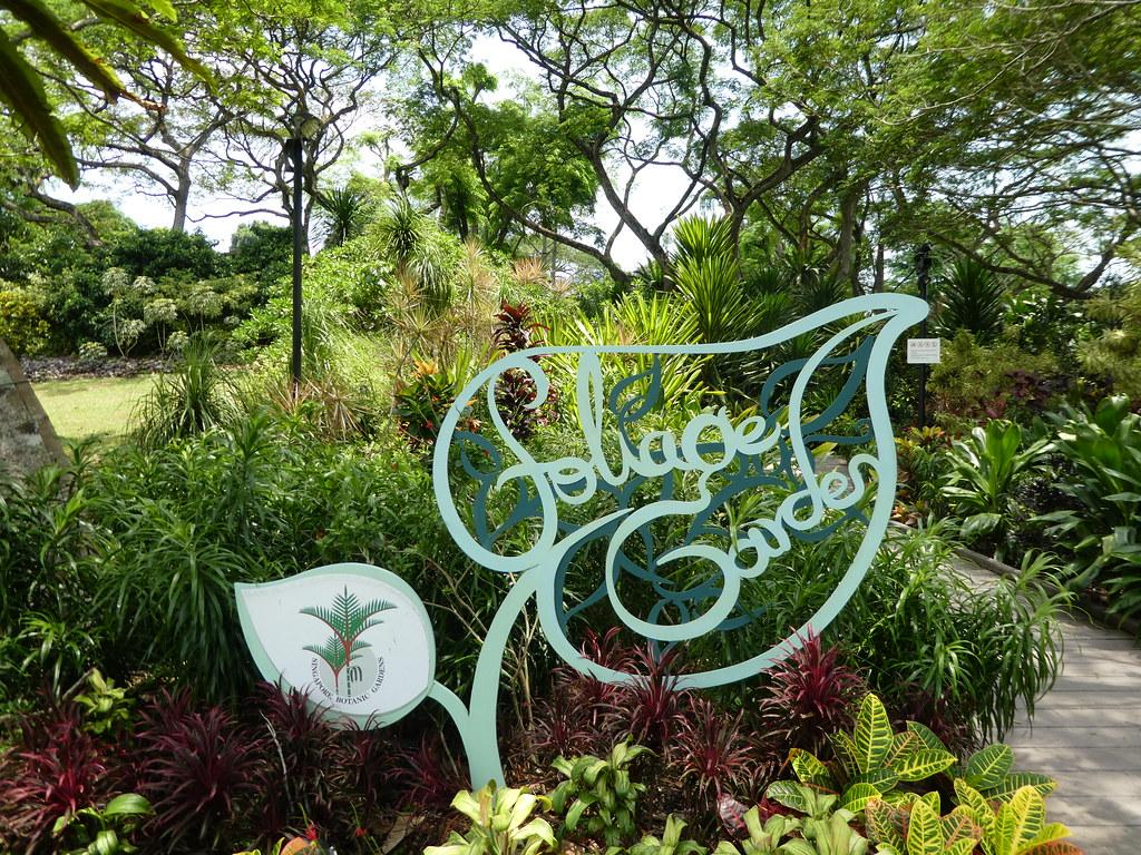 Foliage Garden, Singapore Botanic Gardens