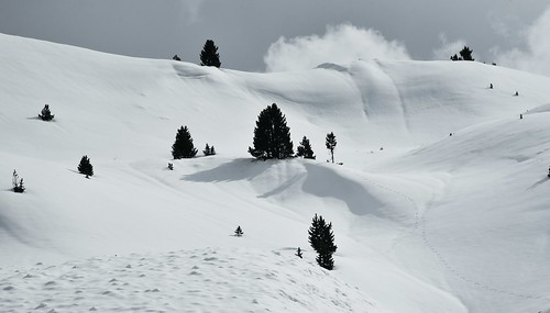 Am Sellajoch; Südtirol, Italien (80)