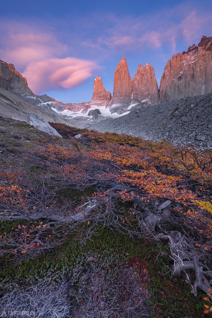 Fall colors and the three towers - Torres del Paine