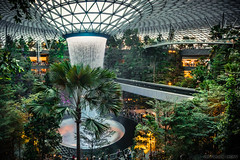 Jewel Changi Airport, Singapore