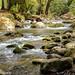 Costa Rica Réserve Naturel Savegre San Gérardo de Dota