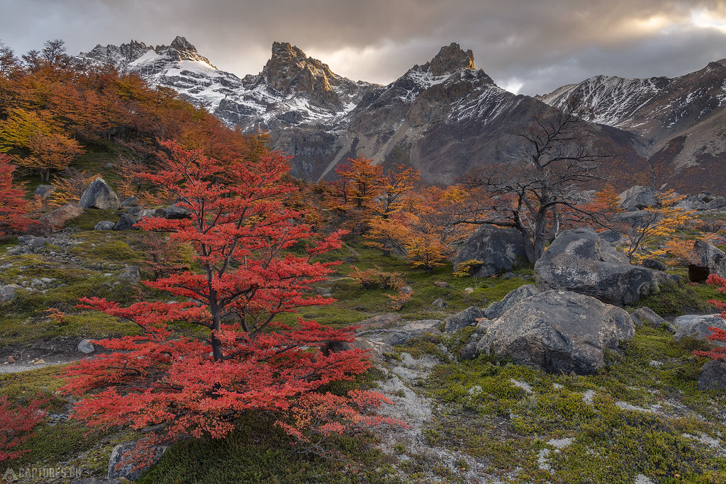 Morning sun and colors - El Chalten