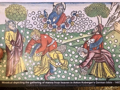 Woodcut depicting the gathering of manna from heaven in Anton Koberger's German bible - 1483 | by swanksalot