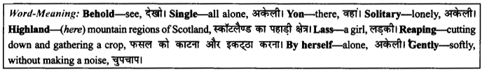 NCERT Solutions for Class 9 English Literature Chapter 8 The Solitary Reaper 3