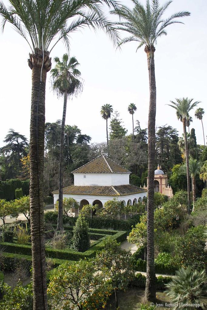 Sevillan Alcázarin puutarhaa