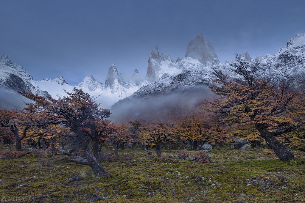 Fog in the morning - El Chalten