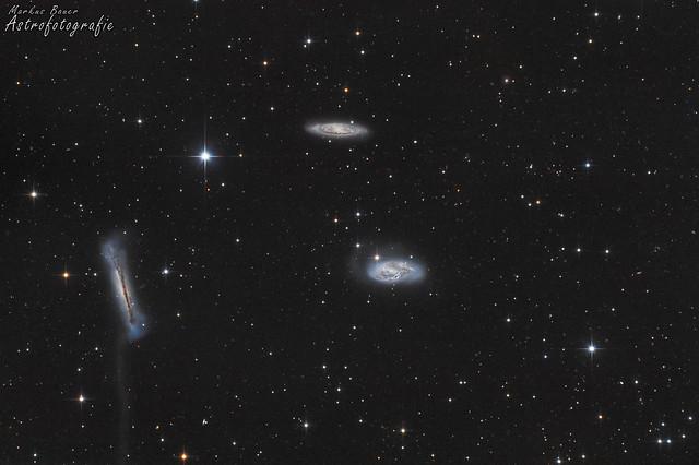 VCSE - A Leo-triplett. Balra az NGC 3638, -az M66 (jobra lenn) és az M65 (fenn). - (C) Markus Bauer felvétele