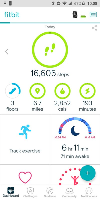 Fitbit busy day