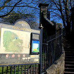 Haslam Park information board