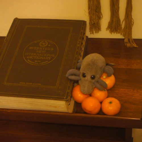 Still life with dictionary, oranges, and dust mite