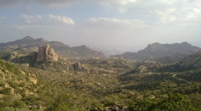 2987 11 Beautiful places to visit in and around Taif 05