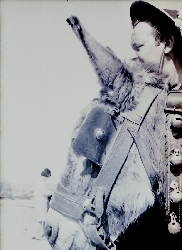 Vendedor de cerámica en burro, años 60. Fotografía de Victoriano de Tena Sardón