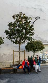 2019-04-20 - Samedi - 110/365 - Sous mon arbre - (Julien Clerc)