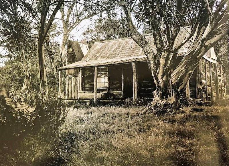 wheelers hut history3