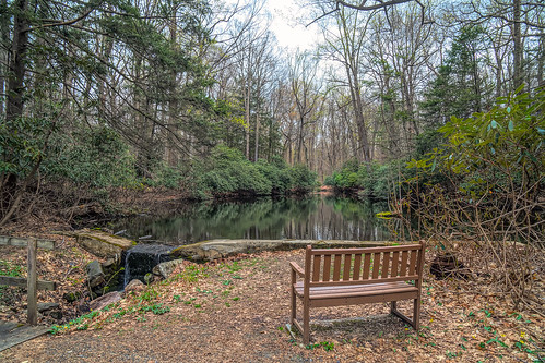 bench seat lake pond park scenic view peaceful rest hartsdale