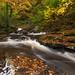 Stream in the Glen by Ken Krach Photography