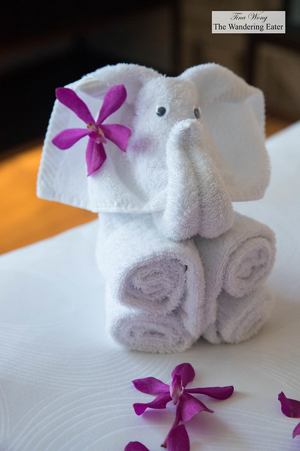 More adorable elephant-shaped towels found around my room