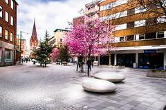 Malmö city
