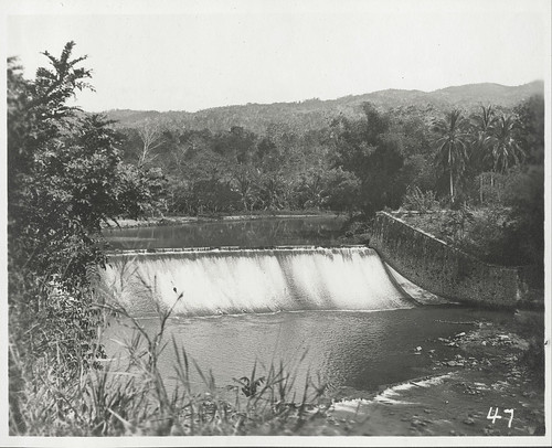 Rio Cobre Dame, Kingston, ca 1900 | by The Caribbean Photo Archive