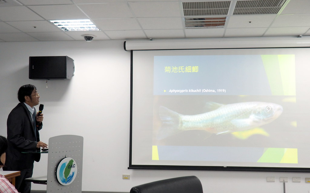 陳義雄強調海洋保育與溪流的保育有絕對關係,當溪流淡水魚類越來越少,影響著海洋生物資源的永續。攝影:李育琴。