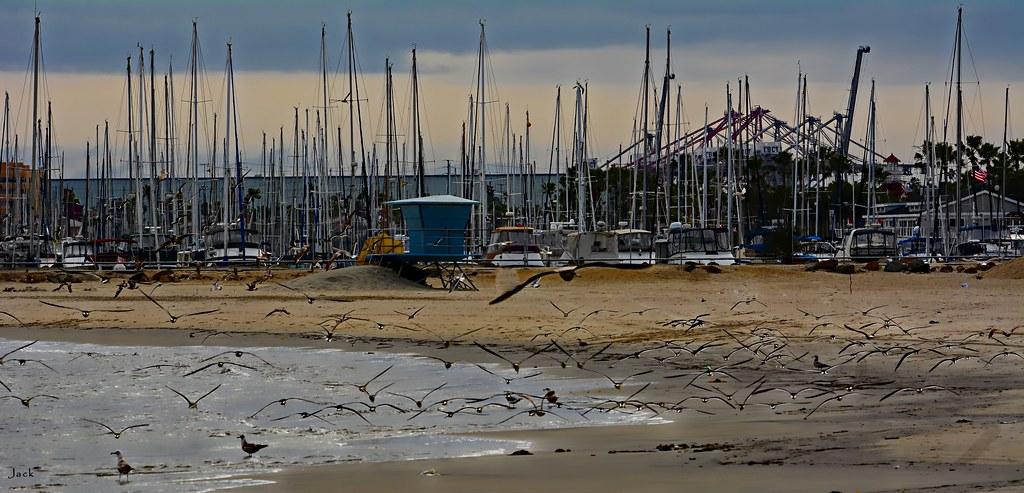 Winter Beach n LB Marina