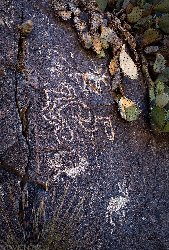 Badger Springs Petroglyphs