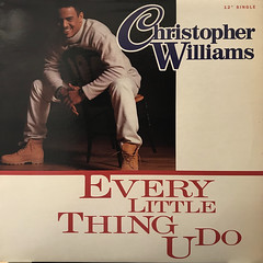 CHRISTOPHER WILLIAMS:EVERY LITTLE THING U DO(JACKET A)