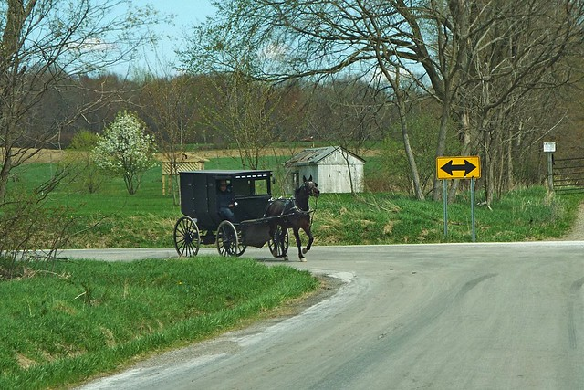 AMISH TRANSPORTATION IN MIDDLEFIELD, OHIO