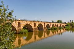 Bridge Over Duero River- Zamora