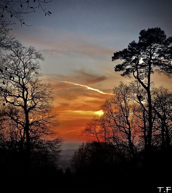 Sun Down in the Surrey Hills