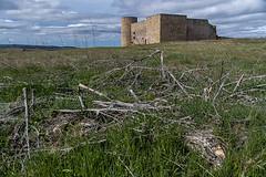 D3735-Castillo de Medinaceli
