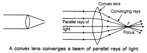 Light Class 7 Notes Science Chapter 15 4