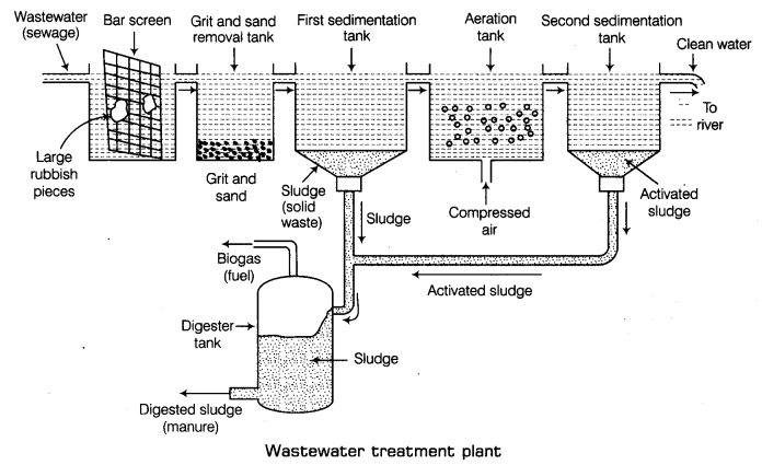 Waste Water Story Class 7 Notes Science Chapter 18 1