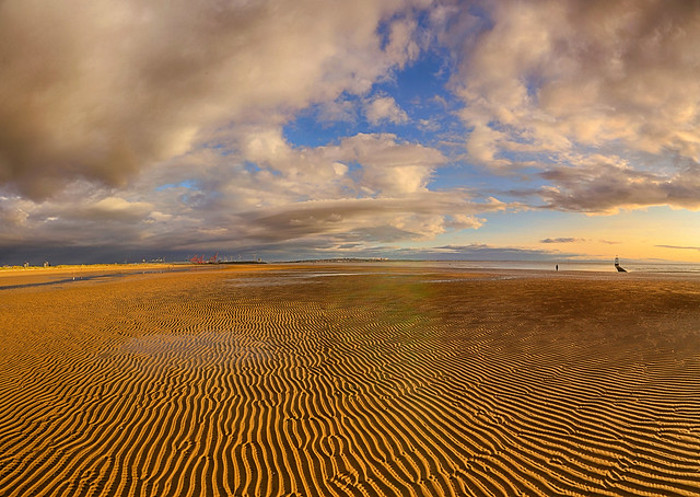 Golden Sand Waves
