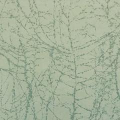 nature's print