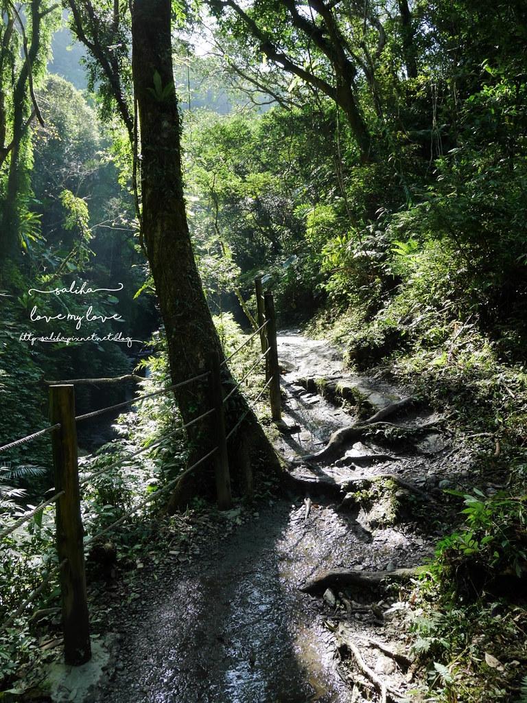 宜蘭礁溪必玩打卡景點林美石磐步道一日遊 (4)