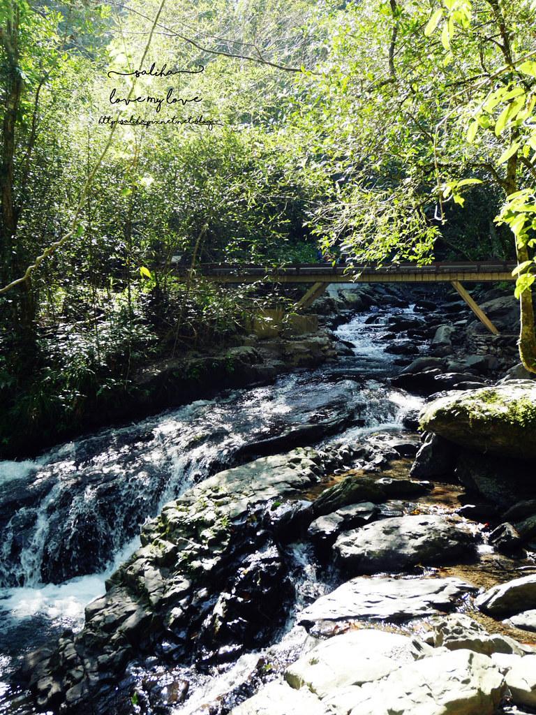 宜蘭礁溪登山踏青爬山林美石磐步道瀑布 (5)