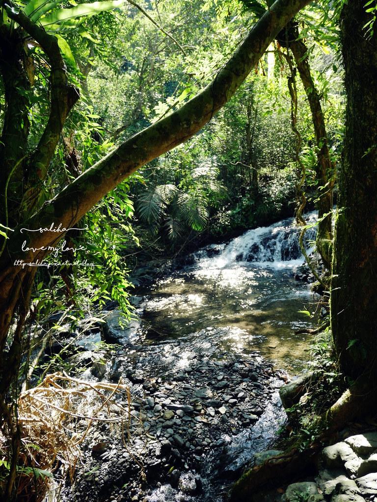 宜蘭礁溪登山踏青爬山林美石磐步道瀑布 (4)